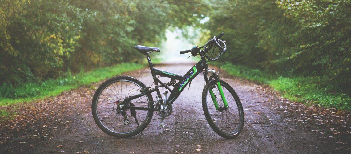 אופניים על שביל הליכה